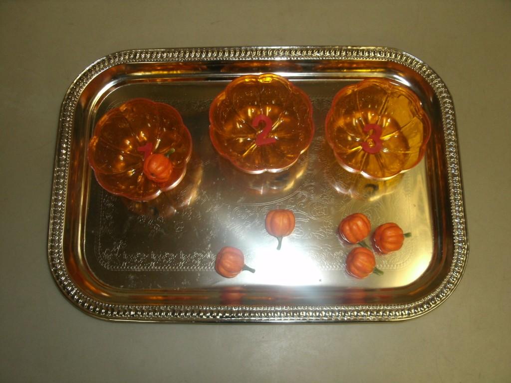 mini pumpkin plastic pumpkin count
