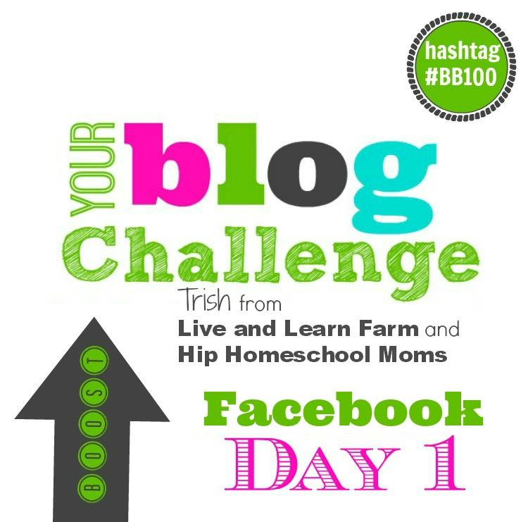 Facebook boost your blog challenge day 1