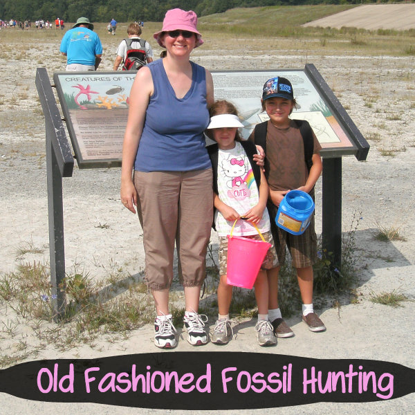 old fashioned fossil hunting