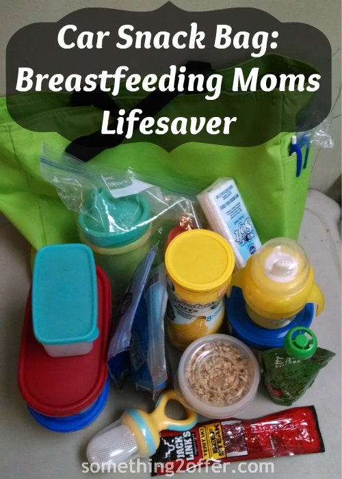 car snack bag breastfeeding moms