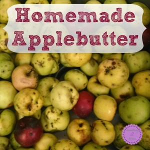 homemade applebutter square