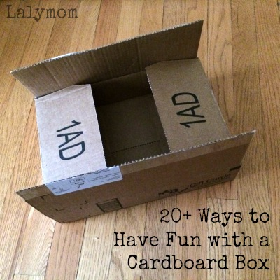 20+ Awesome Ways to Have Fun with a Cardboard Box