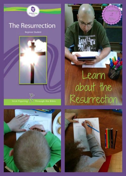 The Resurrection Grapevine Studies