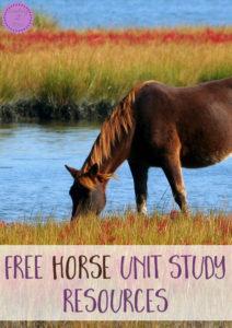 Free Horse Unit Study