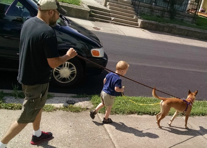 Walking the Dog with Toddler
