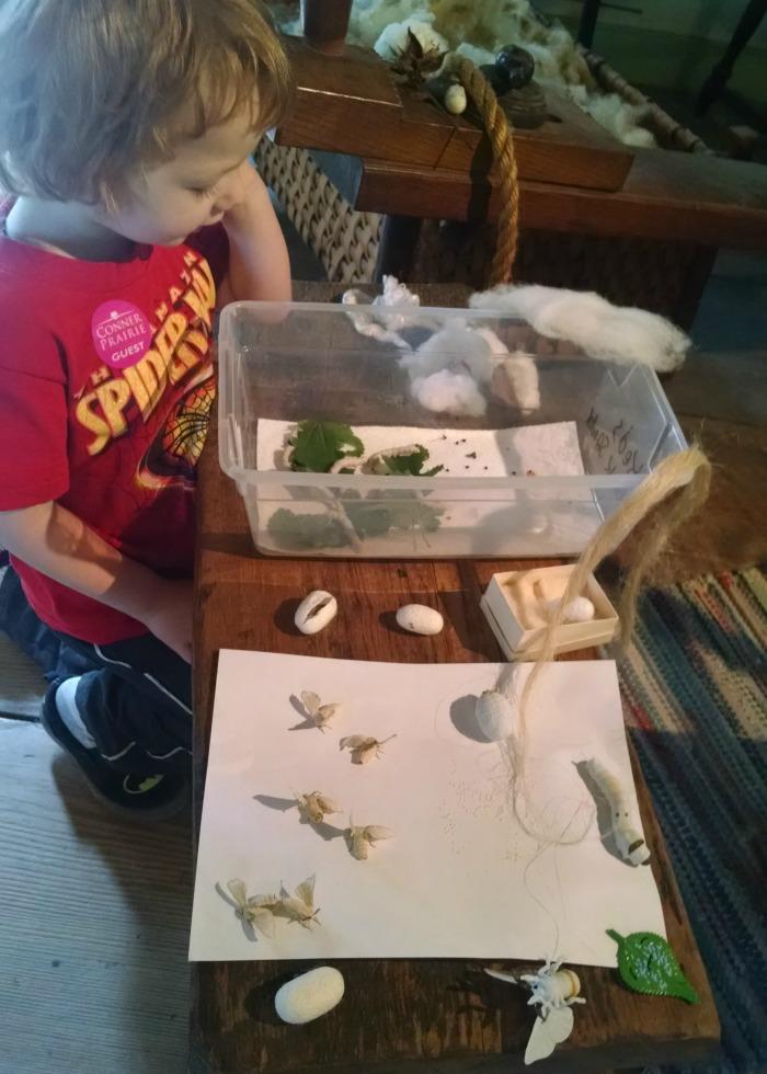 Conner Prairie Silkworms
