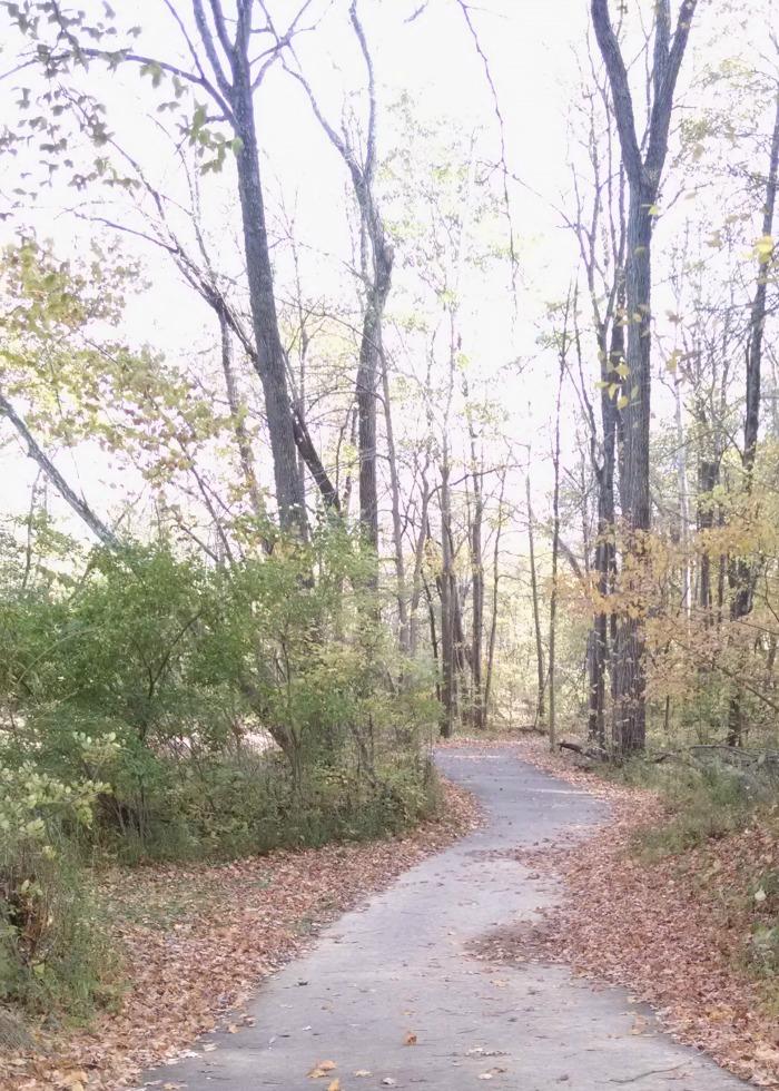 paved hiking trail through Tawawa Park towards Brookside