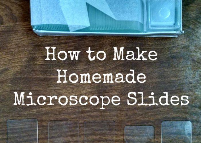 How to Make Homemade Microscope Slides