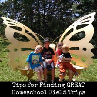 Tips for Finding Great Homeschool Field Trips