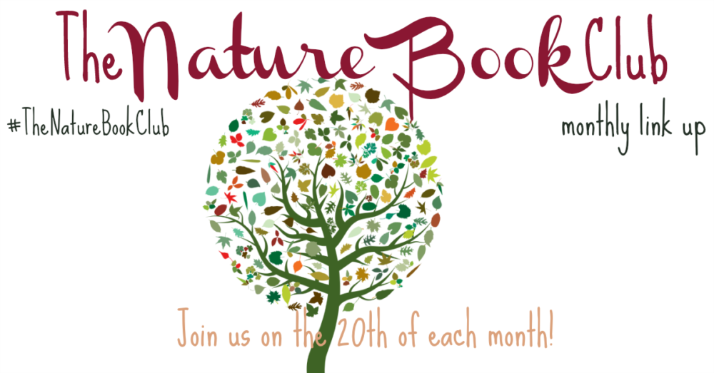 Winter birds and nests scavenger hunt its a monthly book club devoted to connecting children to nature there is a theme for each month in 2018 we welcome your nature book and activity related fandeluxe Images