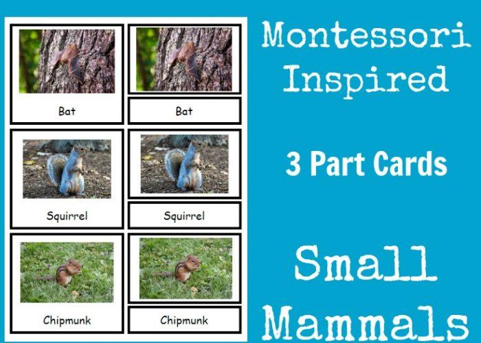 Small Mammals Montessori Inspired 3 Part Cards #TheNatureBookClub