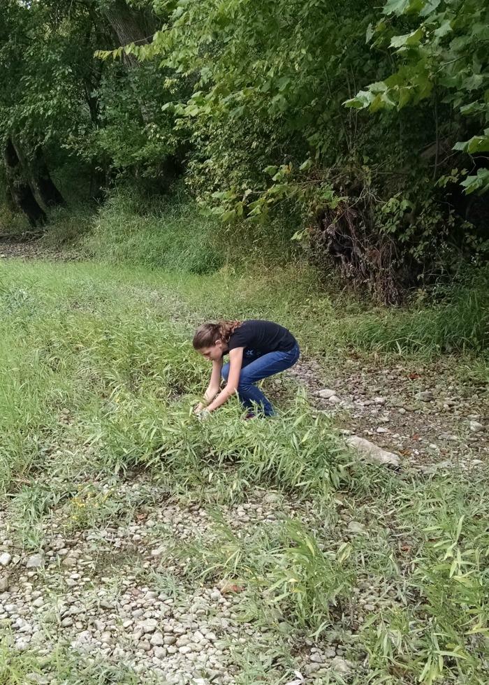 Princess catching frog at river