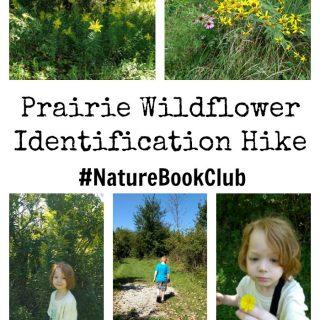 Prairie flower hike