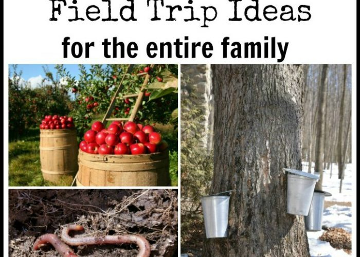 Botany Field Trip Ideas