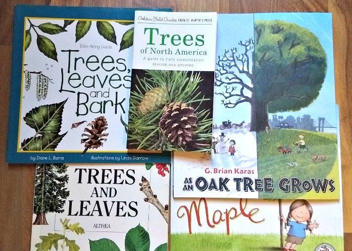 Tree Books for Kids #NatureStudy #NatureBookClub #Booklist
